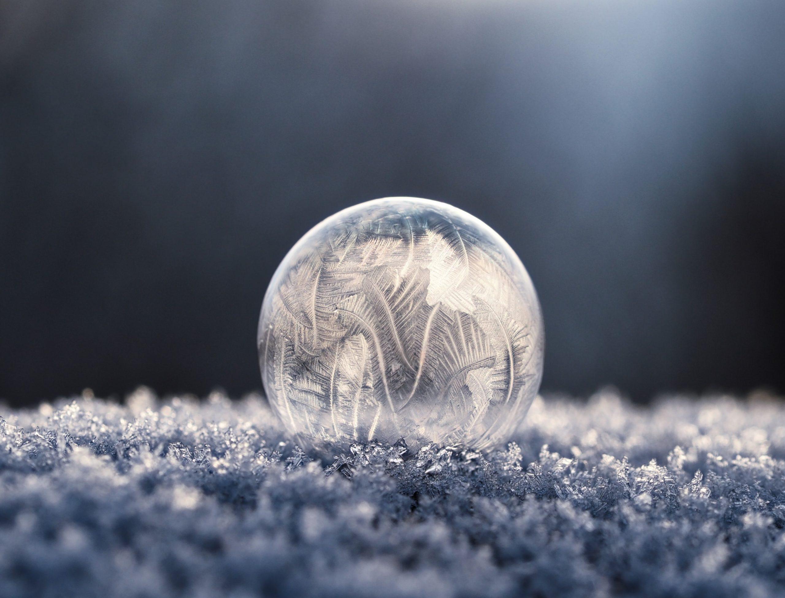 the bubble life